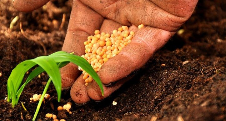 Accordo raggiunto sulla riforma della politica agricola dell'UE