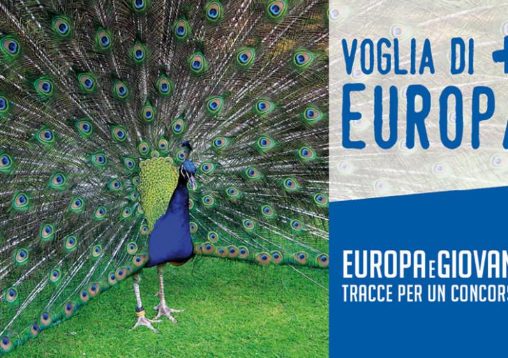 "Concorso ""Europa e giovani 2014"""